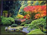 Fall Colors at Portland Japanese Gardens, Portland Oregon Framed Canvas Print by Craig Tuttle