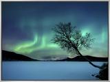 Aurora boreal sobre o lago Sandvannet no condado de Troms, Noruega Impressão em tela emoldurada por  Stocktrek Images