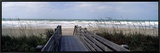 Boardwalk on the Beach, Nokomis, Sarasota County, Florida, USA Framed Canvas Print by  Panoramic Images