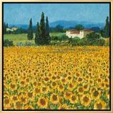 Farm Near Siena Impressão em tela emoldurada por Hazel Barker