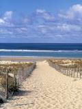 Cape Ferret, golfo d'Arcachon, Gironde, Aquitania, Francia Stampa su metallo di Doug Pearson