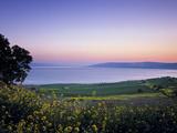 Sea of Galilee, Israel Metalltrykk av Jon Arnold