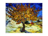 Mulberry Tree, ca. 1889 Kunst på metal af Vincent van Gogh