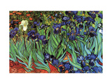 Iris Konst på metall av Vincent van Gogh