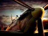 Jachtvliegtuig Spitfire Kunst op metaal van David Bracher