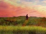 Pastoral Sunset Metal Print by Robert Cattan