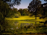 A Peaceful Rural Scene with Trees Lake, Green Grass and Blue Sky Metal Print by Jody Miller