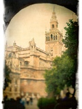 The Giralda Tower as Seen from Patio De Banderas Square, Seville, Spain Metal Print by Felipe Rodriguez