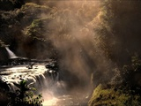A Small Waterfall in the Jungle with Sun Rays Metal Print by Jody Miller