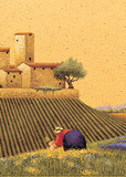 Picking a Bouquet Posters by Lowell Herrero