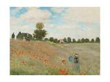 Poppy Field, Near Argenteuil, c.1873 ポスター : クロード・モネ