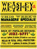 Harry Potter (Weasley & Weasley Specials) Movie Poster Masterprint