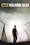 The Walking Dead Season 4 Key Art Posters