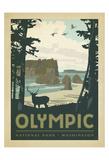 Olympic National Park, Washington Kunstdruck von  Anderson Design Group
