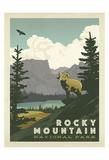 Parque Nacional das Montanhas Rochosas nos EUA Poster por  Anderson Design Group