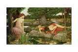 Echo and Narcissus, 1903 Giclee Print by John William Waterhouse