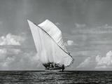 An Arab Dhow, Old Mombasa Harbour, Kenya, 5th April 1952 Fotografisk tryk af Charles Trotter