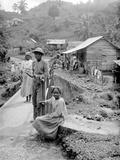 Maroon Negroes, Jamaica, 1908-09 Fotografie-Druck von Harry Hamilton Johnston