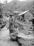 Maroon Negroes, Jamaica, 1908-09 Stampa fotografica di Harry Hamilton Johnston