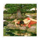 Echo and Narcissus, 1903 (Detail) Reproduction procédé giclée par John William Waterhouse