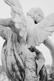 Ange Reproduction photographique par  French School