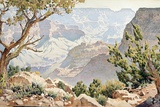 Grand Canyon Gicléetryck av Gunnar Widforss