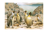 Giant Penguins Giclee Print by Wilhelm Kuhnert