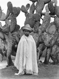 Boy in Front of a Cactus, State of Veracruz, Mexico, 1927 Fotografisk tryk af Tina Modotti