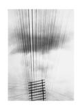 Telephone Wires, Mexico, 1925 Reproduction photographique par Tina Modotti