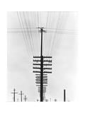 Telegraph Wires, Mexico, 1925 Fotoprint av Tina Modotti