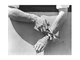 Hands of the Puppeteer, 1929 Photographic Print by Tina Modotti
