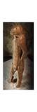 Lion Man of the Hohlenstein Stadel Giclée-tryk af  Prehistoric Art