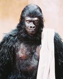 Planet of the Apes Fotografia
