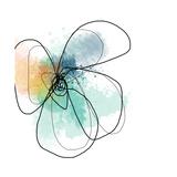 Mixed Color Petals Kunstdruck von Jan Weiss