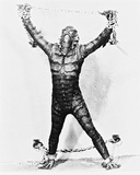 Creature from the Black Lagoon Foto