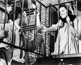 West Side Story (1961) Photo