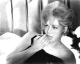 Kim Novak, Of Human Bondage (1964) Fotografia