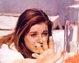 哀愁の花びら(1967年) 写真