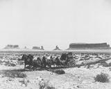 Stagecoach Foto