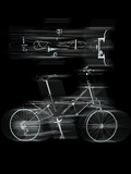 Bicycles in Motion Photographic Print by Graeme Montgomery