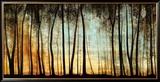 Golden Forest Poster von Carolyn Reynolds