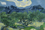 Vincent Van Gogh (The Olive Trees) Plastic Sign Signe en plastique rigide par Vincent van Gogh