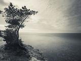 Panga Cliff, Kuressaare, Saaremaa Island, Estonia Photographic Print by Green Light Collection