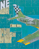 Tail Wing No.3 Giclee Print by Kareem Rizk