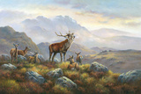In The Hills Giclee Print by Wendy Reeves