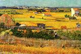 Vincent Van Gogh Harvest at La Crau with Montmajour in the Background Plastic Sign Plastskilt