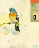 Bird VII Giclee Print by Kareem Rizk