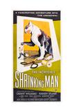 THE INCREDIBLE SHRINKING MAN, US poster art, 1957. Kunst