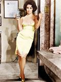 Butterfield 8, Elizabeth Taylor, 1960 Fotografia
