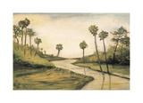 Palmetto Cove Impressão giclée por Mark Pulliam